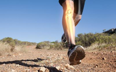 Will Running Damage Your Knees? Studies Say No.